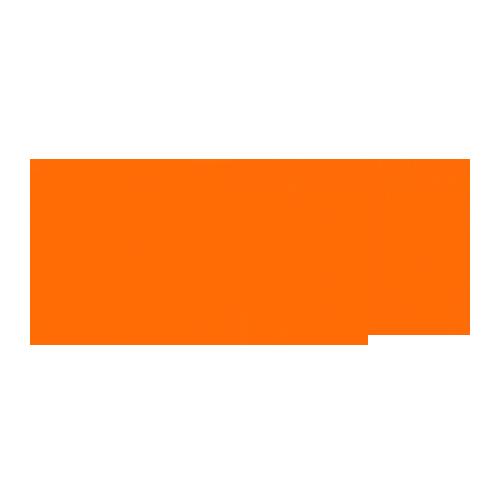 The Edinburgh Festival Fringe Logo